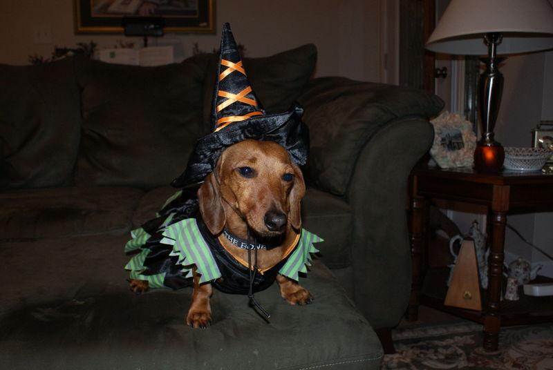 Halloween08 021